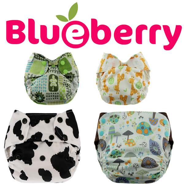 blueberryproducts