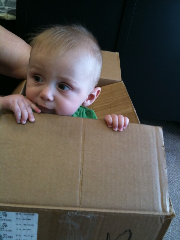 Wordless Wednesday- Baby in a Box