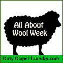 Ladies… Keep your husbands away from your Wool.  You have been warned!