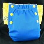 Antsy Pants Pull On Cloth Diaper