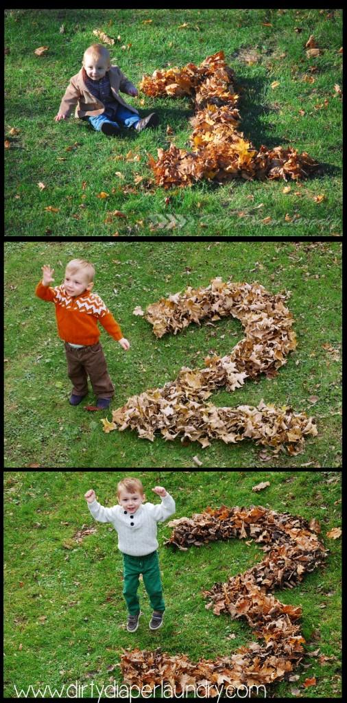 fletcher_3_leaves