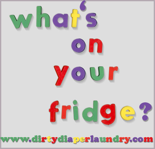 what s on your fridge dirty diaper laundry. Black Bedroom Furniture Sets. Home Design Ideas