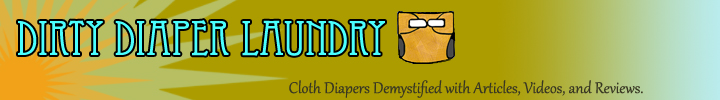 Dirty Diaper Laundry