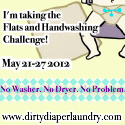 The 2nd Annual Flats and Handwashing Challenge- Preparation and Blogging Prompts