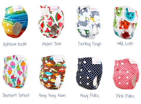Designer Bums Giveaway for 1 Print +1 Minky  {8/1}
