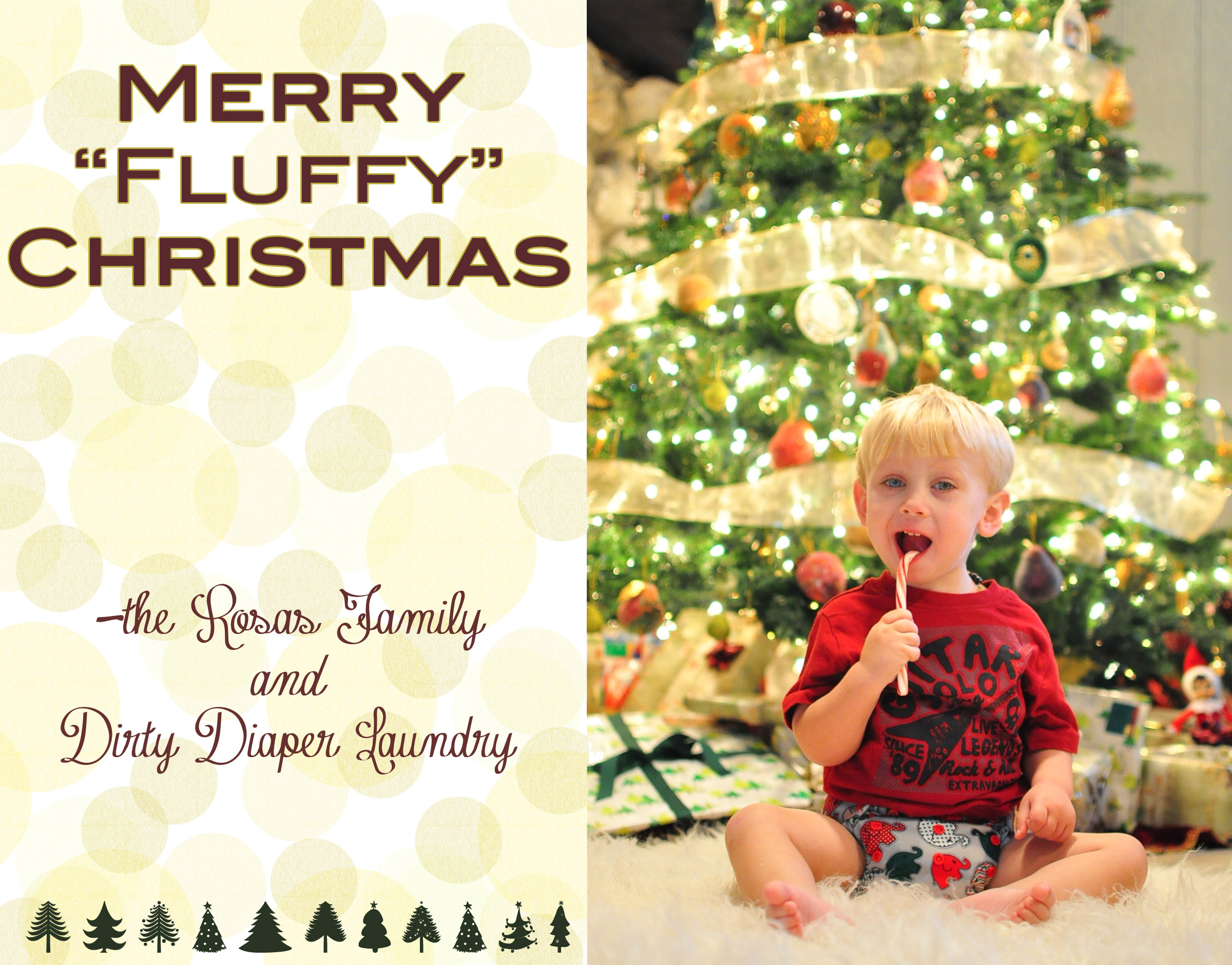 wishing your family a merry christmas this year perhaps santa will bring your little ones some new cloth diapers ill be taking more time away form the - Dirty Merry Christmas Pictures