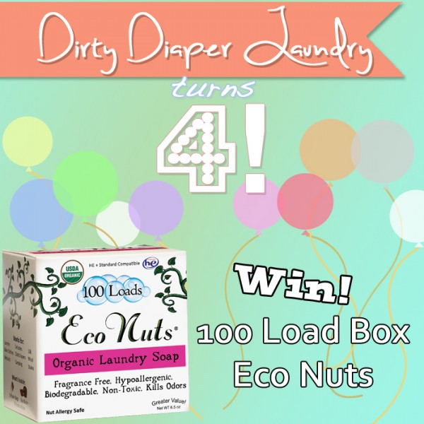 4 Years of DDL- 100 Load Box of Eco Nuts Giveaway {Ends 4/21}
