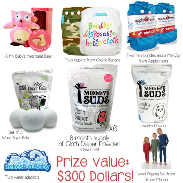 Molly's Suds Cloth Diaper Powder Prize Pack- Win a 6 Month Supply, Cloth Diapers, and more! {11/22}
