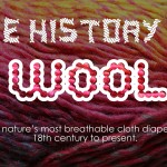 The History of Wool- Mother Nature's Diaper Cover