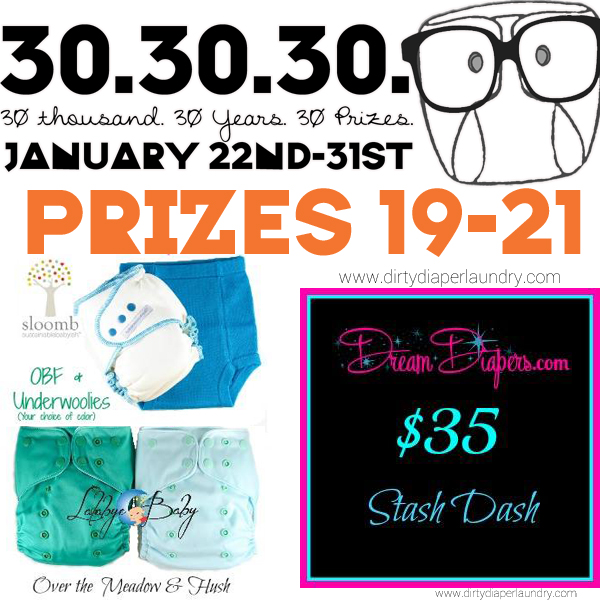 Announcing Prizes 19-21 from Dream Diapers!