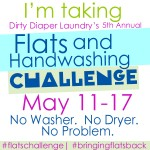 5th Annual Flats and Handwashing Challenge Day 2: What's in your stash?