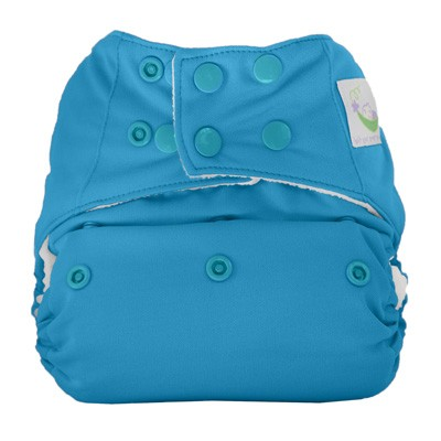 Sweet Pea All In One Diaper Review