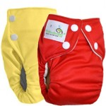 Bottombumpers Diaper Video and Review