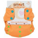 Smart Bottoms Too Smart Cover Review