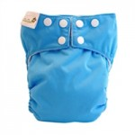 Little Owl All In Two Diaper Video and Review